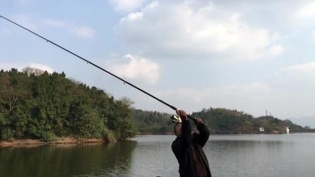 湃影钓鱼测试