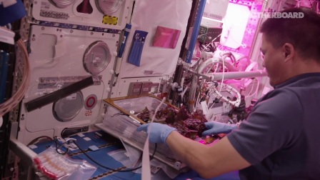 Tracking Bacteria on the Space Station Could Help Us Survive Beyond Earth