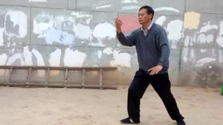 潘存忠传统武式太极拳三十九式