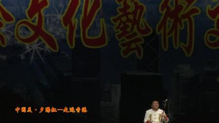 """""""中国美·夕阳红""""国际文化艺术交流演出""""板胡独奏""""《春城节日》"""
