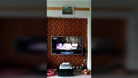 阁莉绮央视CCTV-1