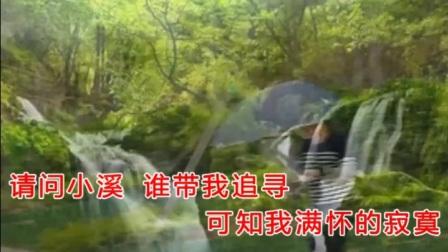 一首意境优美好听的歌《三月里的小雨》一幅情景交融的美丽图画