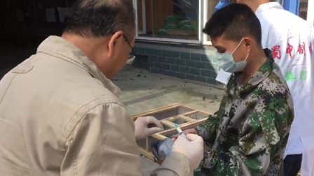 农业部专家刘月焕亲临健翔云天赛鸽公棚防疫指导视频2