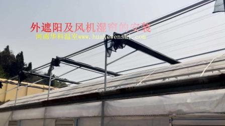 【河南华科温室】连栋薄膜温室改造项目.mp4