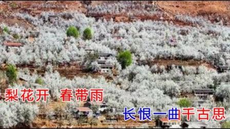 新编历史京剧《大唐贵妃》主题曲《梨花颂》一首委婉大气的京歌