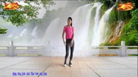 焦桥刁宋丽之舞广场舞《天涯海角也会一路顺风》制作演示:丽之舞