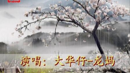 大华仔-龙妈的一首《风含情水含笑》,听的心都醉了。