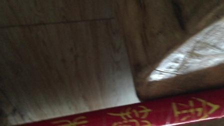 界上最短的视频了解金箍棒木土金箍棒需要带的