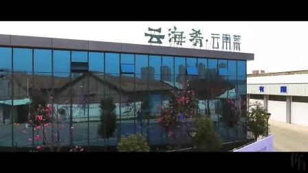 云海肴X不是美术馆,72小时限时创作,云南话版