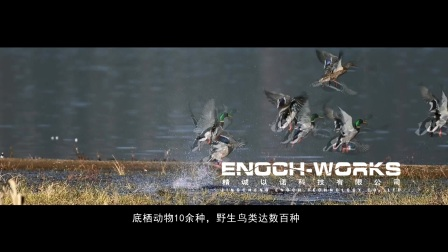 西昌湿地三期宣教中心宣传片