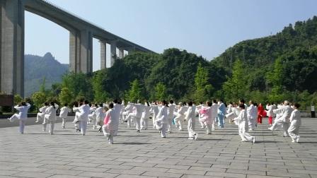 42式太极拳---太极班湿地公园春游(20170509)