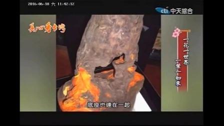 中天电视台 真心看台灣 牛樟芝藝術家 葉勝輝