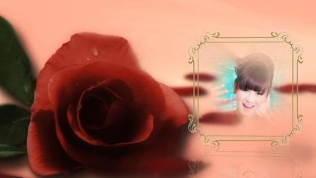 婚庆模板献给爱丽丝-58映像