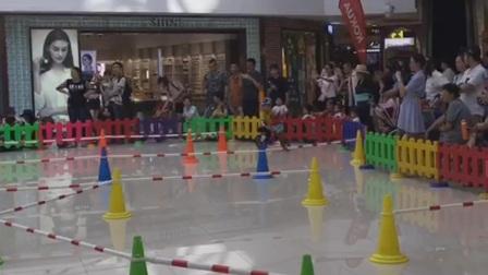 kokua武汉儿童平衡车比赛近