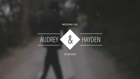 18849528-wedding-titles