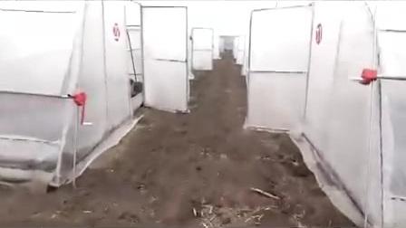 室外室内蝎子养殖最新技术视频播放教材