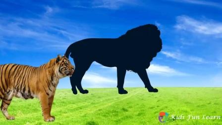 野生动物为孩子们学习野生动物的名字和声音为孩子们学习