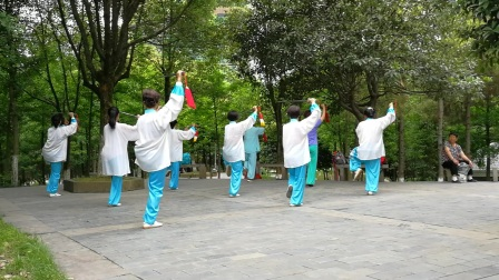 小树林演练24式养身太极剑(20170611)