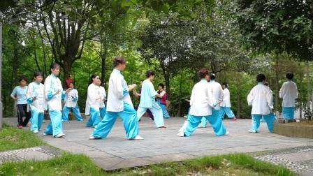 小树林演练24式太极拳(20170611)