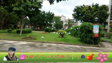 阳东第一职业学校