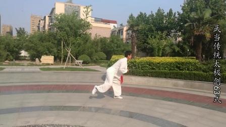 聊城冷森武术【武当传统太极剑63式】