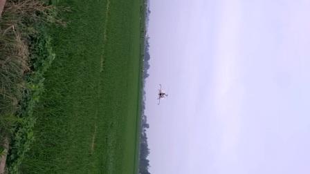 芦尾1组飞机治虫!在赵群超门前飞往何茂章的水田!
