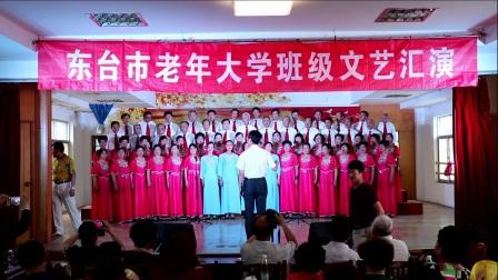 江苏东台市老年大学声乐班大合唱