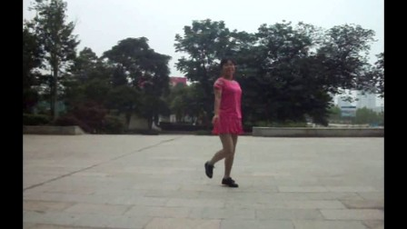 惜凤若曦广场舞 花开的时候你就来看我