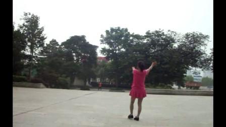 惜凤若曦广场舞   中三_合并文件