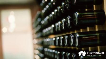 2017澳大利亚红酒品鉴会