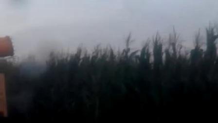 加农炮高效喷药―山东金原农林装备有限公司制造