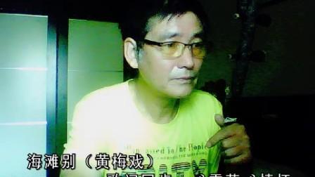 黄梅戏《海滩别》超越演奏[2017_08_03 09-51-49]
