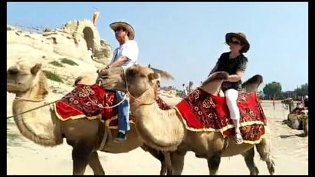 镇北堡西部影城 骆驼篇