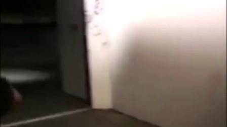 派力肯箱防撞击测试_clip