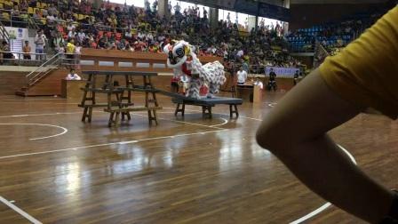 鹤山市2017市运会鹤城镇代表队 吉溪堂 龙狮国术馆[鹤]