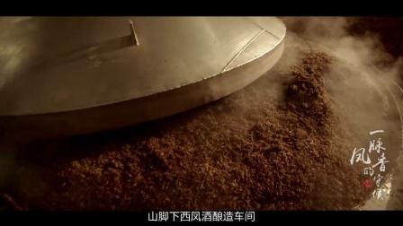 西安宣传片拍摄制作白酒饮料类宣传片样片参考