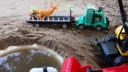 运输野生动物的大卡车倒在了泥坑里,吊车和朋友们来帮忙
