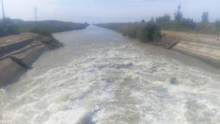 新疆石河子一三三团西岸大渠