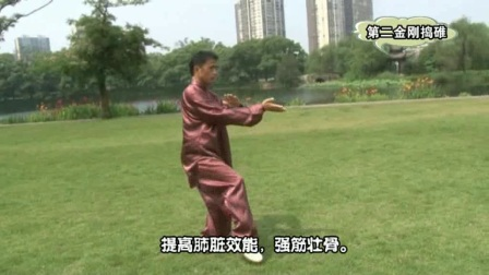 传统养生陈氏19式太极拳教学02