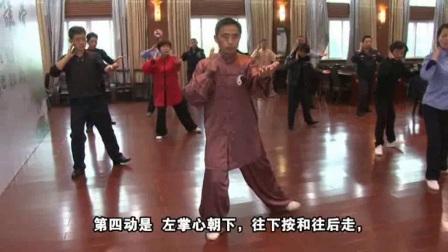 传统养生陈氏19式太极拳教学05
