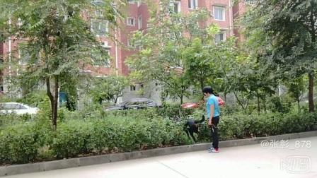 犬道文化第三期初级训犬师—代先娥