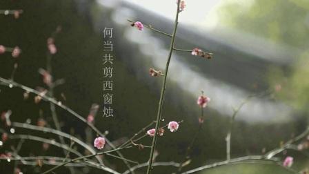 《空山》上海民族乐团国乐中的诗书画系列音乐会1宣传片