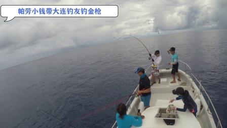 帕劳海钓之水面系金枪鱼群
