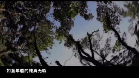 越南自驾游宣传片