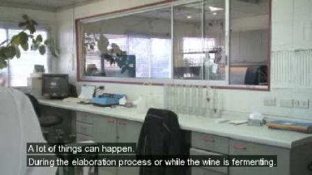 用户对 Winescan™ 分析仪的反馈——Concha Y Toro