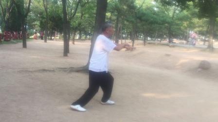 李永泰医生的24式太极拳