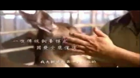 2011台湾百年神农奖林昆鋒