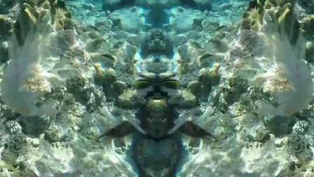 西沙珊瑚礁很美