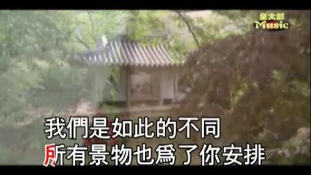 胡中平视频翻唱《再度重相逢》