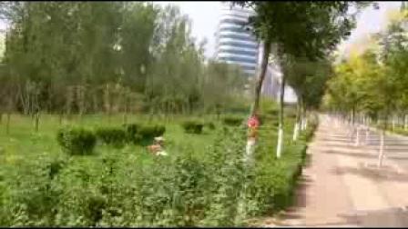 美丽的邱县(剪影)【6】:河北视频1